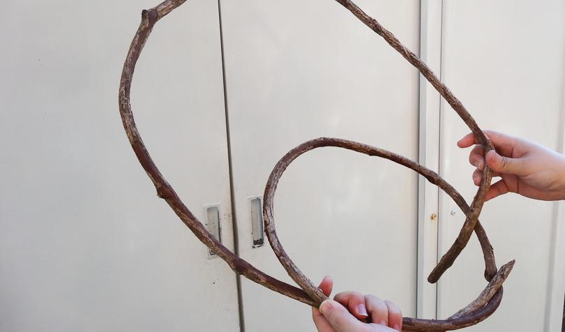 ツルの巻き方2
