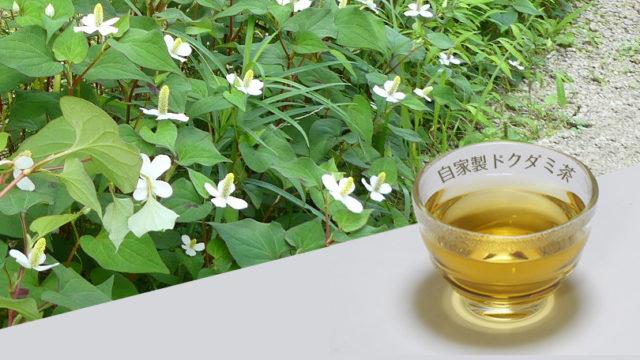 ドクダミ茶の作り方