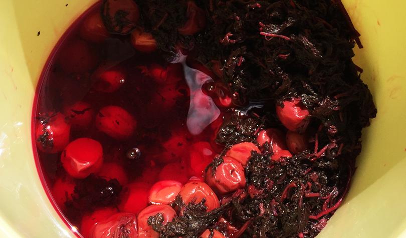 赤紫蘇に漬けた梅