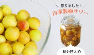 糖分が気になる方へ!甘さ控えめのリンゴ酢で作る梅サワーの簡単な作り方【熱中症・夏バテ予防に】