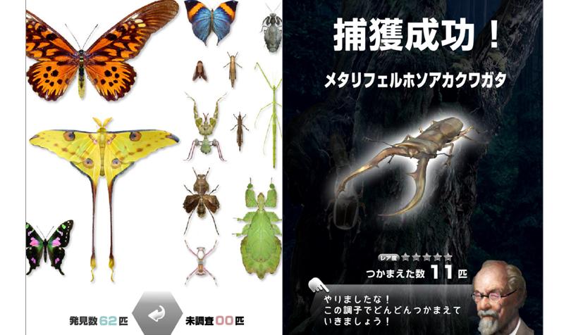 世界の昆虫採集の画面