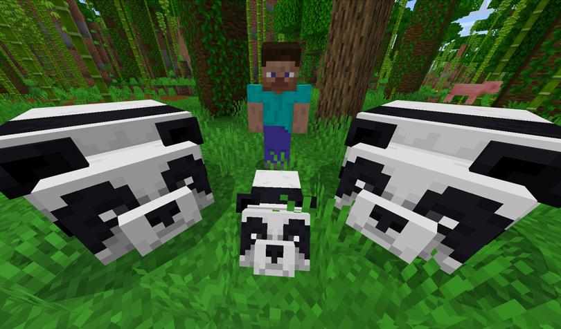 パンダに遭遇