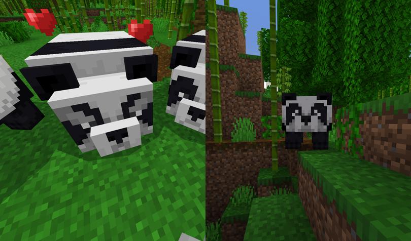顔の違うパンダ