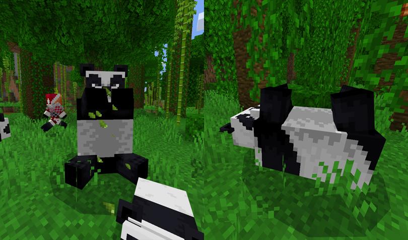 パンダの恰好