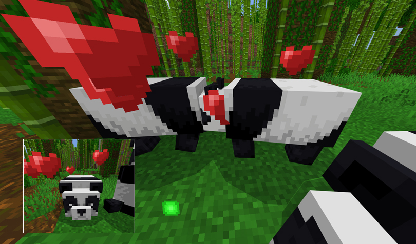 パンダに竹をあげる