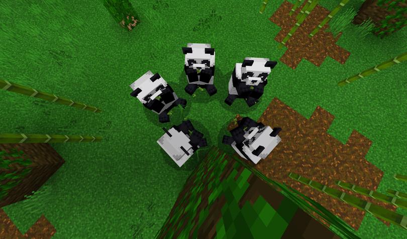 5匹のパンダ