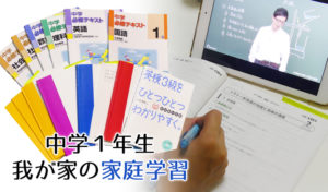 【中学1年生の家庭学習】スタディサプリと併せて使っているおススメの問題集とiPad学習アプリ紹介。