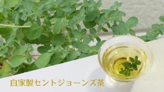 自家製セントジョーン茶の作り方