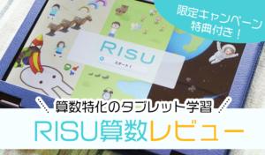RISU算数レビュー